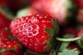 A lot of fresh strawberry — Zdjęcie stockowe