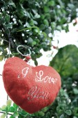 Red heart on tree for valentine day — Stock Photo