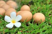 Vintage easter eggs — Stock Photo