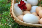 Ročníku velikonoční vajíčka a bílé vejce — Stock fotografie