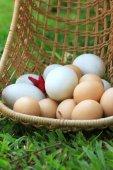 Vintage paaseieren en witte eieren — Stockfoto