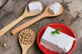 Soybeans and tofu — Stock Photo