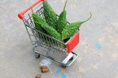 Fresh vegetable bitter melon — Stock Photo