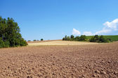 Brown farmland — Stock Photo