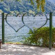 Love oath - grid hearts with nature background — Stock Photo #80968052