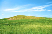 Green Hill Blue Sky — Stock Photo