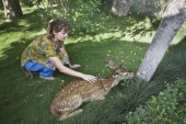 Tourist caressing Spotted deer in Bardia, Nepal — Stock Photo