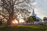 Mahatupa big Dagoba in Anuradhapura — Stock Photo