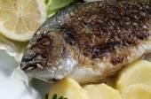 Close up van zeebrasem vis met aardappel — Stockfoto