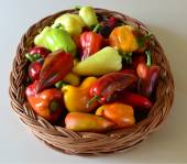 The sweet peppers in the basket — Stock Photo