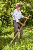 Old farmer using scythe to mow the grass  — Stock Photo