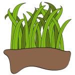 Blades of green grass — Stock Vector #51807975