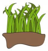 Bladen van groen gras — Stockvector