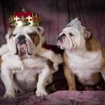 Royal couple — Stock Photo #66989227