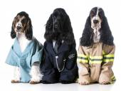 First responders — Stock Photo