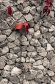 Old wall cracked texture — ストック写真