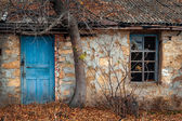 Window and door of the old house under the tree — Stock Photo