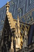 Gothic element of St. Stephen's Cathedral in Vienna, Austria — Stock Photo