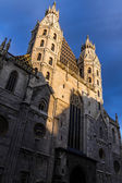 Catholic Cathedral St. Stephen's Cathedral in Vienna under the s — Stock Photo