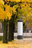 Blank advertising space under the trees in autumn — Stock Photo