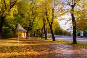 Park near road in the fall in the center of Riga — Stock Photo