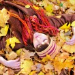Girl lying in autumn leaves portrait. — Stock Photo #51875639