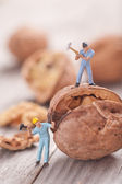 Small people split the walnut. The concept of cooking — Stock Photo