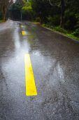 Route asphaltée de pluie — Photo