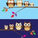 Owl Family — Stock Vector #56664067