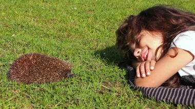 Girl having fun while laying against hedgehog in the grass — Stock Video