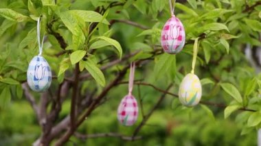 Tree decorated with easter eggs — Stockvideo
