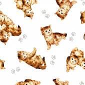 Pattern of cat — Stock Photo