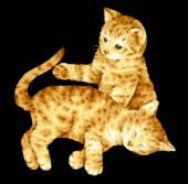 Illustration of  cat — Stock Photo