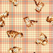 猫のパターン — ストック写真