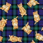 Pattern of cat — Zdjęcie stockowe