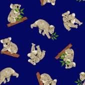 Koala pattern — Stock Photo
