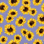 Sunflower pattern — Stock Photo
