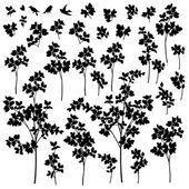 Pflanzen-Abbildung — Stockvektor