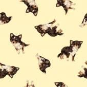 Dog pattern — Stock Photo