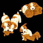 Illustration of dog — Stockfoto