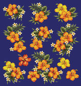 Hibiscus flower illustration — Stock Photo