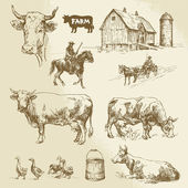 Farm, cow, agriculture - hand drawn collection — Stockvektor