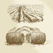 Barrels, vineyard, harvest, farm - hand drawn collection — Vector de stock
