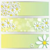Set of spring and summer banners with white flowers — Stock Vector