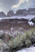 The mountain — Stock Photo