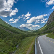 Curvy and lonely road between norwegian mountains — Stock Photo #63798025