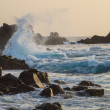 Big waves with splatters breaking on the shore at sunset — Stock Photo #72652967