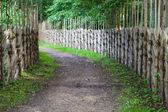 Defocused background of turning footpath between decorative wood — Stock Photo