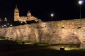 Roman Bridge and Salamanca — Stock Photo
