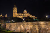 Roman Bridge and Salamanca — Stock Photo